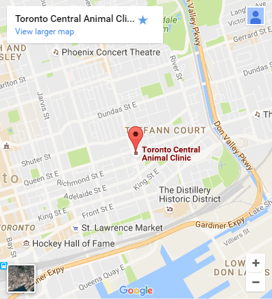 Toronto Veterinarian Location Map