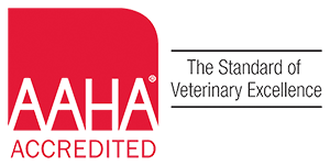 AAHA Toronto Pet Surgery