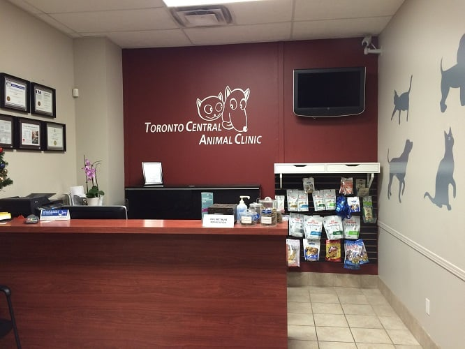 Our team is ready to assist you with your Veterinary Emergency needs!